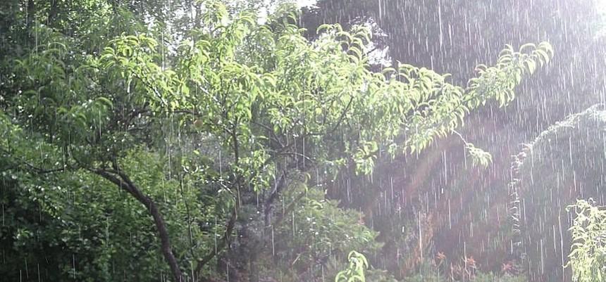 déšť, pnd