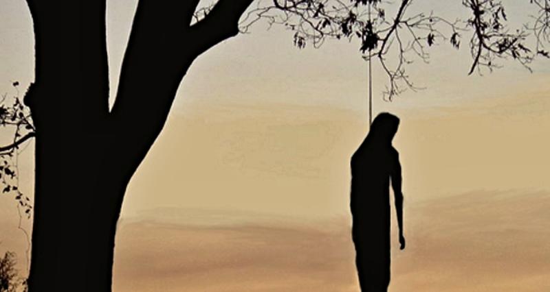 sebevrah na stromě, zdroj-web