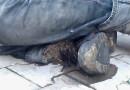 Neuvěřitelné! Muž měl nohu plnou červů. Jednalo se o bezdomovce