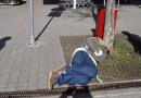 Města si často neví s opilci rady. Přicházejí proto s vyhláškami, jež regulují popíjení na veřejnosti