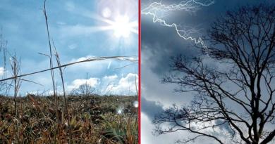Počasí jako na houpačce: Několik dní vedra, poté ochlazení a déšť