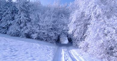 Na západě Čech mohou být silné mrazy. Blíží se arktický mráz!
