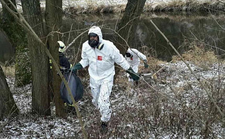 nález uhynulých ptáků a ptačí chřipka, zdroj - HZS ČR